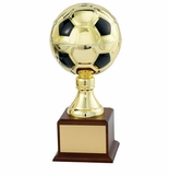 Sport Ball Trophies