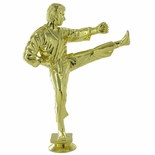 KARATE MALE TROPHY FIGURE
