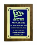 6 X 8 INCH PLAQUE WITH COLOR SCREENED FROSTED PLATE  -  COLOR OPTIONS