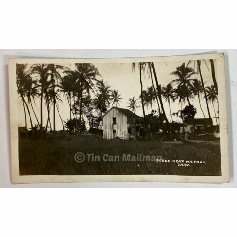 circa 1920 Photo of Scene near Waipahu