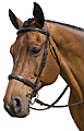 Marcel Toulouse Platinum Camden Bridle with Fancy Stitched Reins