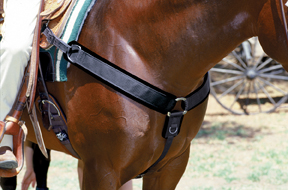SMx® Neoprene Breast Collar by Professional's Choice