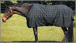 Tuff Rider 1680D THERMOLINED TURNOUT BLANKET
