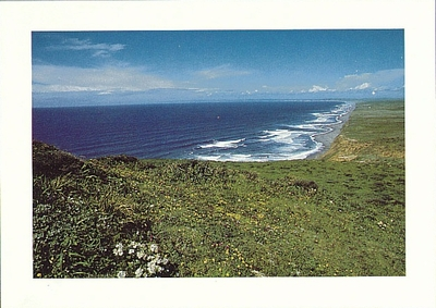 THE GREAT BEACH, POINT REYES NATIONAL SEASHORE - LARGE POSTCARD