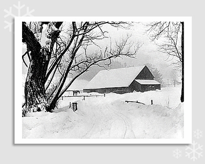 "BARNYARD DURING BLIZZARD, BARNARD, VT, 1940 - MARION POST WOLCOTT HOLIDAY CARD ""SEASON'S GREETINGS"""