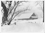 BARNYARD DURING BLIZZARD, BARNARD, VT, 1940