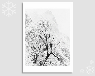 SENTINEL ROCK & SNOW - HOLIDAY CARDS