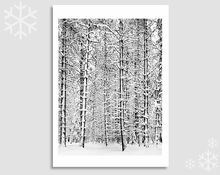 PINE FOREST IN SNOW - HOLIDAY CARDS (OUT OF STOCK)