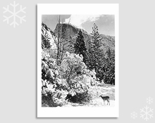 HALF DOME, TREES, DEER - HOLIDAY CARDS (OUT OF STOCK)