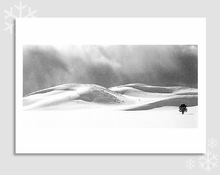 APPROACHING STORM, HAYDEN VALLEY, YELLOWSTONE NATIONAL PARK - HOLIDAY CARDS