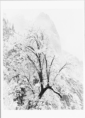 SENTINEL ROCK AND SNOW, YOSEMITE NATIONAL PARK, CA, c 1938