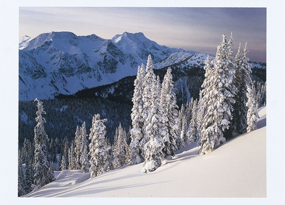 ALAN MAJCHROWICZ - WINTER IN THE CARIBOO MOUNTAINS, BRITISH COLUMBIA - HOLIDAY CARD