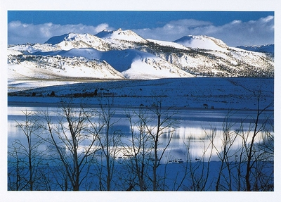 MONO CRATERS WITH SNOW, REFLECTED IN MONO LAKE, MONO BASIN SCENIC AREA, EASTERN SIERRA, CA - HOLIDAY CARDS