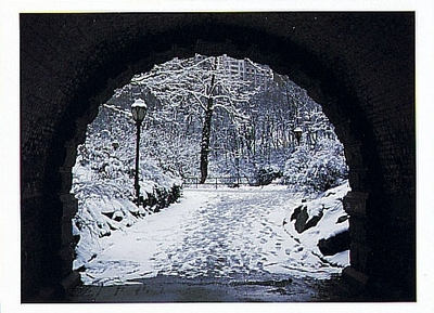 DERMOT CONLAN - ARCH IN CENTRAL PARK, NEW YORK CITY, NY - HOLIDAY CARD