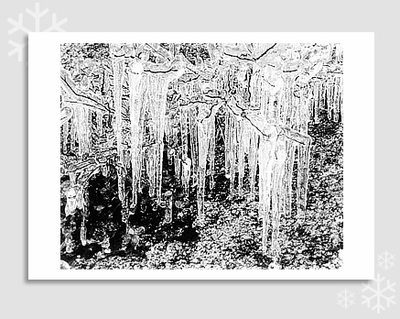 "ICICLES & WILLOW TWIGS -ANSEL ADAMS HOLIDAY CARD ""SEASON'S GREETINGS"""