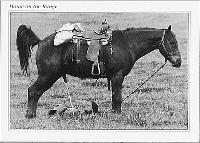 JOHN O'HARA: HOME ON THE RANGE (PAYBACK) SMALL POSTCARD