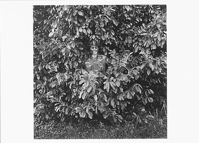 ART ROGERS - THE CAMOUFLAGE MAN, POINT REYES, CA, 1986 - NOTECARD