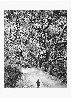 WYNN BULLOCK - CHILD ON FOREST ROAD, 1958 - NOTECARD
