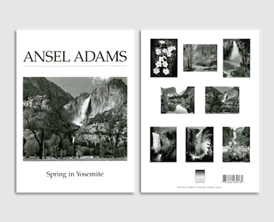 SPRING IN YOSEMITE - BOXED NOTECARDS