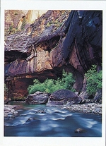 "VIRGIN RIVER, ""THE NARROWS"", ZION NATIONAL PARK, UT"
