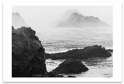 SHORELINE IN FOG, POINT LOBOS STATE RESERVE, CA, 1981
