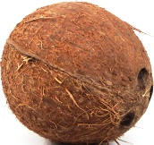 Dried Coconut