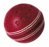 Gray Nicolls Club Ball