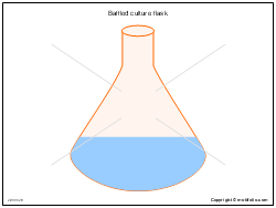 Baffled culture flask