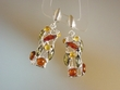 Multicolor  Baltic  Amber Stering Silver Earrings