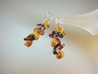 Multi-coloured  Baltic Amber Sterling Silver  Earrings