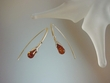 Artistic Baltic Amber Sterling Silver  Earrings