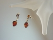 Honey Baltic  Amber  Sterling Silver Teardrop Earrings
