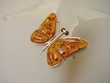 Honey Baltic Amber Sterling Silve Butterfly Brooch