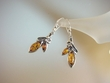Honey  Baltic Amber Flower   Sterling Silver Earrings