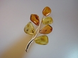 Multi-coloured Amber Sterling Silver Brooch