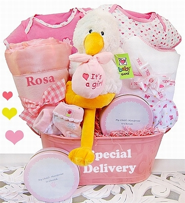 """""""A Special Delivery""""  Baby Girl Gift Basket"""
