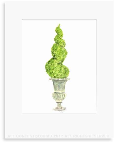 Antique Cast Iron Urn with Spiral Topiary - 8 x 10 Print in 11 x 14 Mat