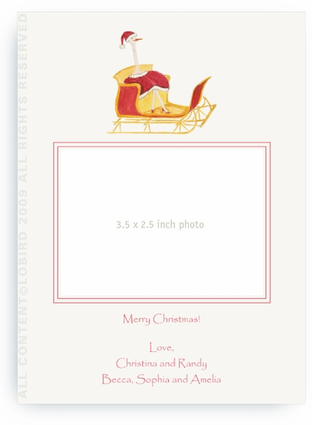 Holiday Ostrich in Sleigh - Photo Greeting Cards