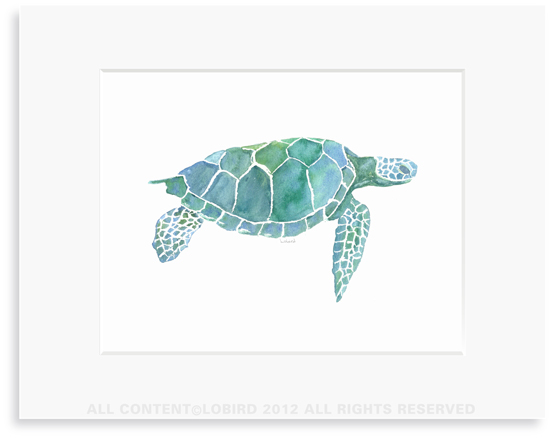 Sea Turtle - 8 x 10 Print in 11 x 14 Mat