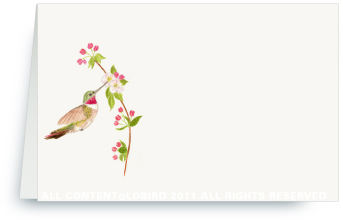 Ruby Throated Hummingbird - Apple Blossom - Place cards