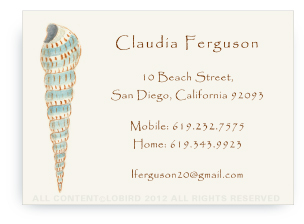 Cone Shell -Calling Cards