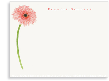Gerber Daisy - Flat  Note cards