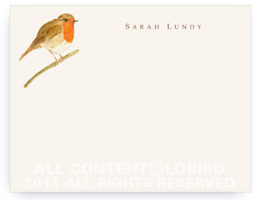 British Robin - Note cards