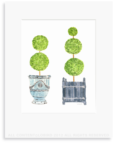 Pots with Topiary - collection 2 - 8 x 10 Print in 11 x 14 Mat