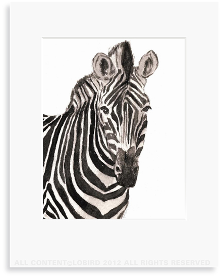 Partial Zebra - 8 x 10 Print in 11 x 14 Mat
