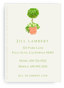 Topiary in Terra Cotta Pot - Calling Cards