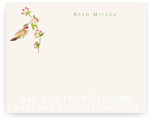 Ruby Throated Hummingbird - Apple Blossom - Flat Note cards