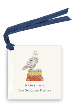 Snowy Owl on Stack of Books