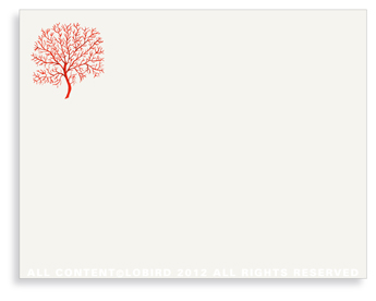 "Coral Fan - Red- Non-Personalized Note Cards (4.25"" X 5.5"")"