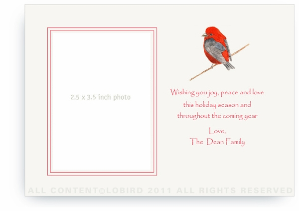 Scarlet Holiday Bird - Photo Greeting Cards